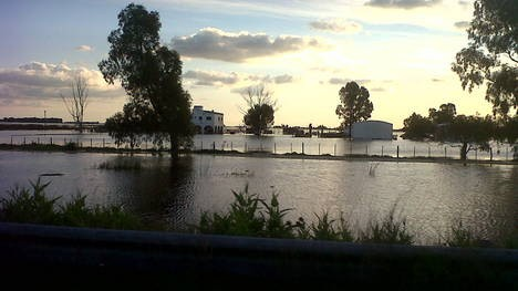 Las lluvias agravaron la situación del campo