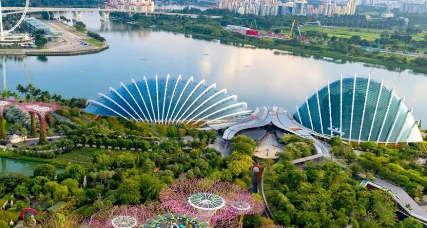 El milagro de Singapur: de desastre ambiental a ciudad verde